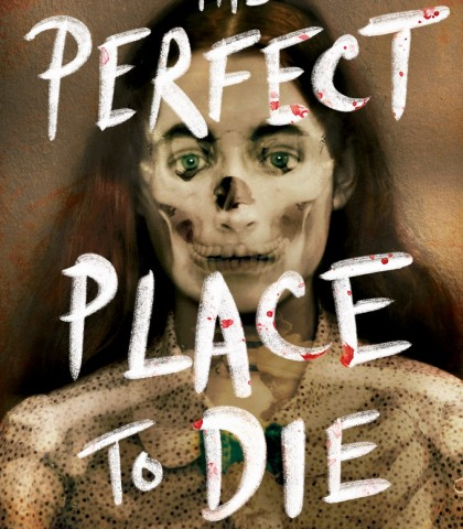 The Perfect Place To Die Release Date? Bryce Moore 2021 New Book